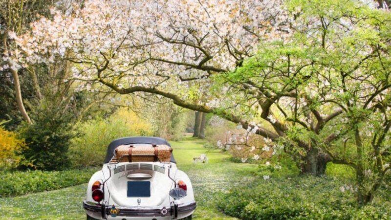 Пролет идва - обслужване на кола - Пътна помощ - roadhelp.bg